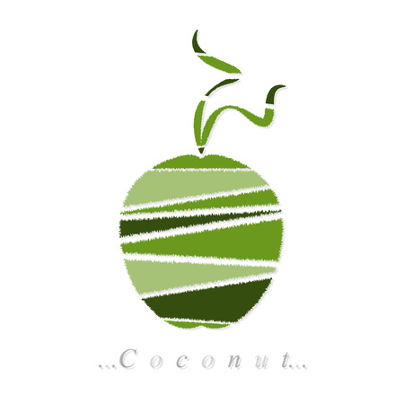 coconut icon on isolated white background Vector