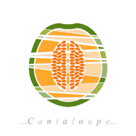 Vector of fruit, cantaloupe icon on isolated white background Vector