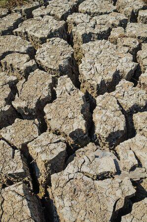 parched: Drought parched soil