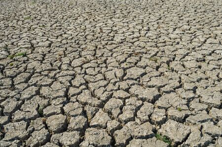 waterless: Drought parched soil