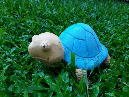 decorate: Decorate your garden with turtle