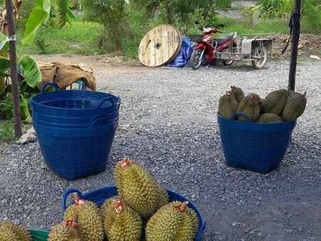 closeup: Durians