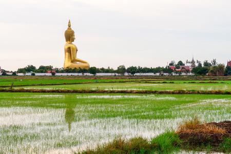 thong: Big Buddha, Ang Thong thailand.