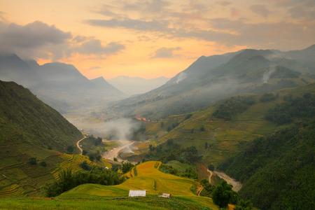 farm field: Landscape in sunset at Sapa