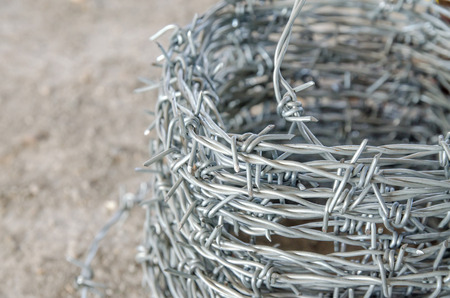 cattle wire wire: coil of barbed wire on the counter in the store . building materials store in the open air