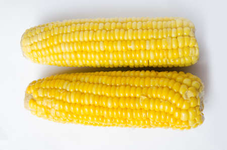 outwit: ears of Sweet corn isolated on white background Stock Photo