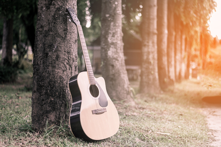 classical guitar propped against a tree trunk in the background grass,Acoustic with sunset Reklamní fotografie
