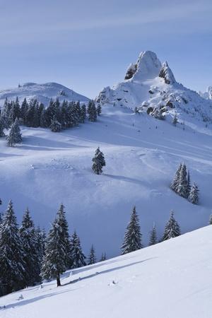 mountain top in winter, Ciucas Mountains, Romania Stock Photo - 8463683