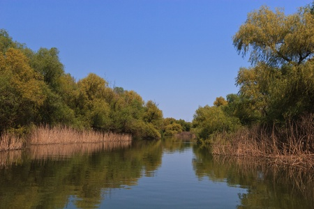 danubian: a river channel in the Danube Delta, Romania Stock Photo
