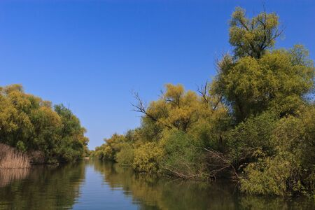 danubian: a small river channel in the Danube Delta