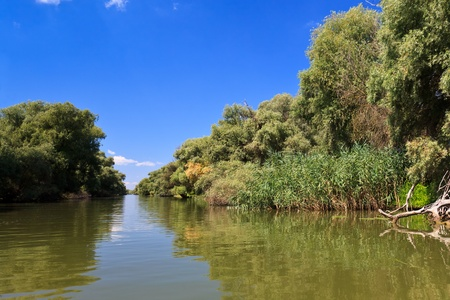 a small river channel in the Danube Delta