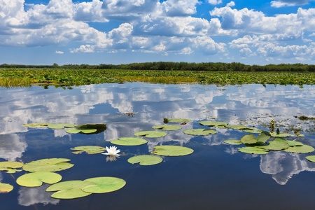 a beautiful lake in Danube Delta, Romania Stock Photo