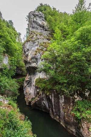 baile: Corcoaia Gorge protected area in Baile Herculane, Romania.