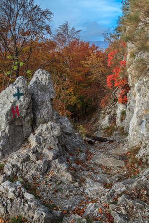baile: Tasnei Gorge protected area in Baile Herculane. Mehedinti Mountains, Romania