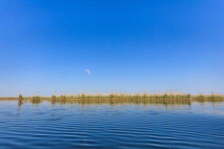 danube delta: landscape in the Danube Delta, Romania Stock Photo