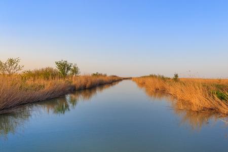 landscape in the Danube Delta, Romania, Europe