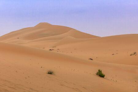 sand dunes in Abu Dhabi desert. United Arab Emirates Stock Photo