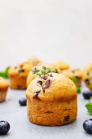 Fresh homemade delicious blueberry muffins decorated with thyme, fresh berries and mint on gray concrete background. Close up.