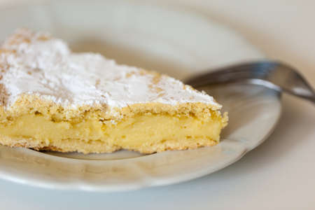 a delicious homemade Custard Cake on a white plate Stock Photo - 18170460