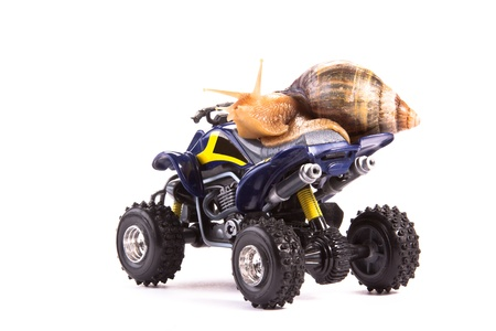 A snail riding a toy quad model photo
