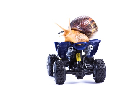 A snail riding a toy quad model looking back photo