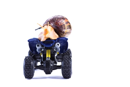 A snail riding a toy quad model looking back and looking back photo