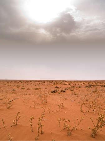 desierto del sahara: Desierto del S�hara bajo un espectacular cielo Foto de archivo