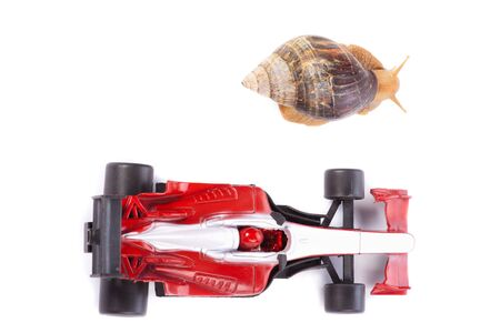 A Snail and an F1 toy car ready to race seen from above photo