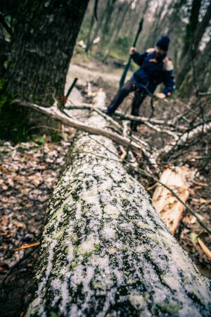 passing over: a hiker passing over a fallen tree trunk covered with lichens and snow