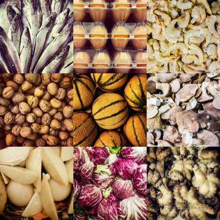 a biologic food collage with fishes, melons, walnuts, cheese, cabbage, octopus, mushroom and shrimps Stock Photo - 20706091