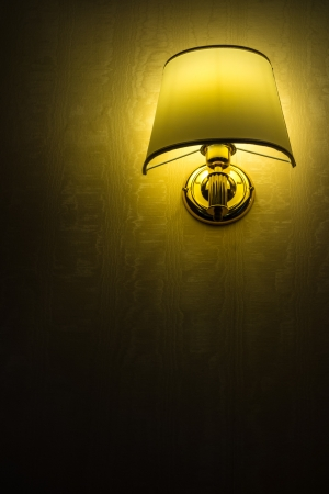a warm bracket lamp on a wallpaper covered wall; with copy space Stock Photo - 20706121