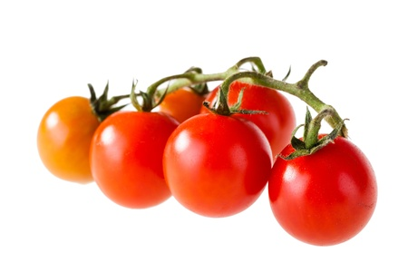 a branch of red little tomatoes isolated over a white background Stock Photo - 20706137