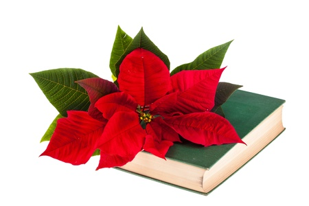 A poinsetta flower on the top of an old book isolated on white photo