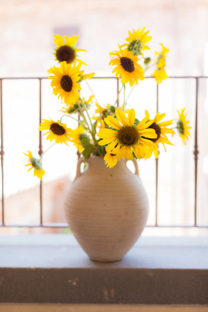 a bunch of vibrant potted sunflowers into a warm and cozy living room photo