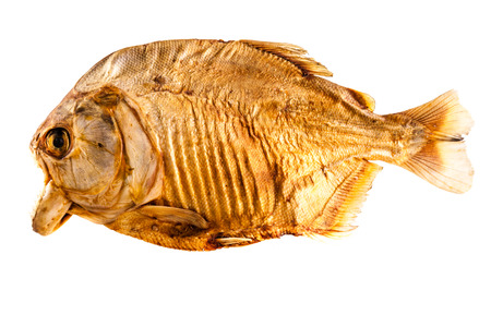 pygocentrus: a dried pirana isolated over a white background