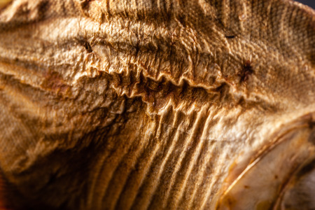 close up shot of the wrinkled skin of a dried fish