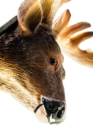 elk point: a small reindeer toy head made in rubber and isolated over white Stock Photo