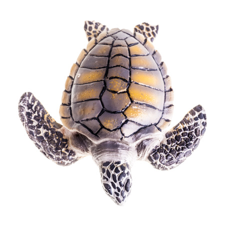 a plastic sea turtle toy isolated over a pure white background photo