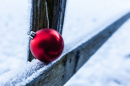 hoary: a shiny red christmas ball resting on a wooden fence covered with hoarfrost ice crystals