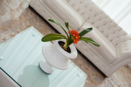 marqueteria: una sala de estar moderna lujosa y grande, con muebles blancos