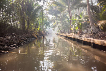saduak: a canal in the misty thai jungle or countryside in the ratchaburi province