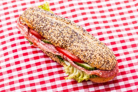 hoagie: a delicious salami sub sandwich over a classic red and white tablecloth