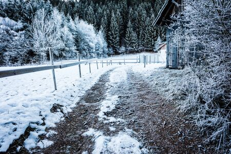 a frosty rural footpath with a wooden fence covered in hoarfrost and some cabins in the woods