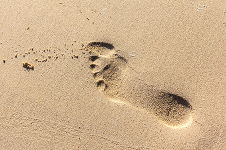 indentation: human barefoot footprints on the sand of a tropical beach Stock Photo