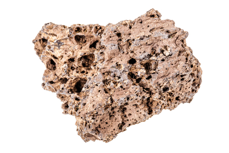 vesicular stone: Piece of Lava stone, pumice stone, or volcanic pumice isolated over a white background