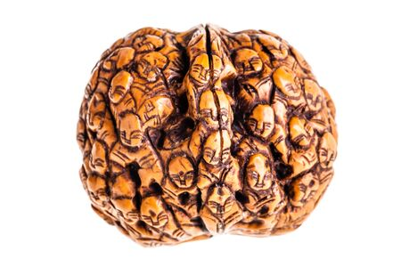 nut shell: an intricate nut shell carving isolated over a white background