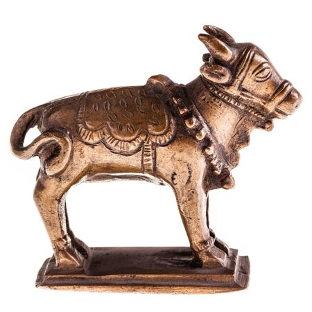 bronzy: a bronze cow or bull figurine isolated over a white background