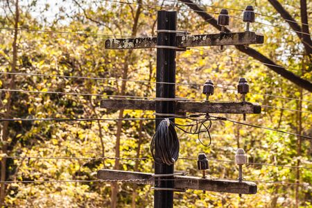telegraaf: a small old telegraph pole with wires in the countryside