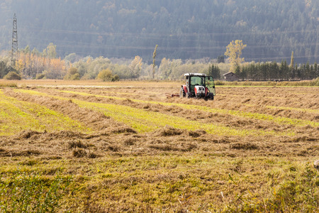 small field: a tractor plowing a small field in a sunny day