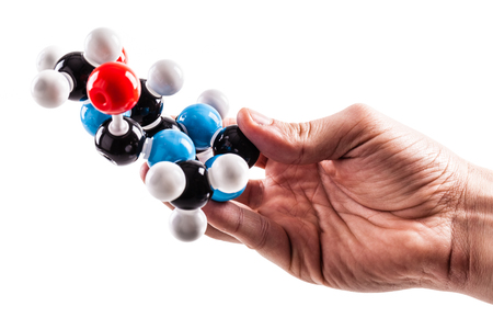 caffeine molecule: a male hand holding a caffeine chemical molecular structure model isolated over a white background Stock Photo